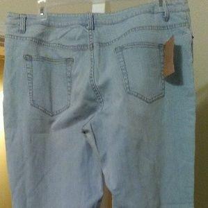 Coldwater Creek Light Blue Jeans Plus Size W18
